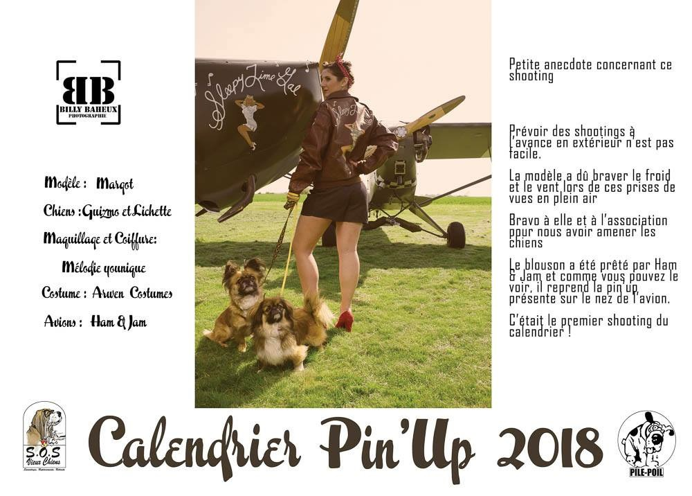 Calendrier pin-ups et chiens