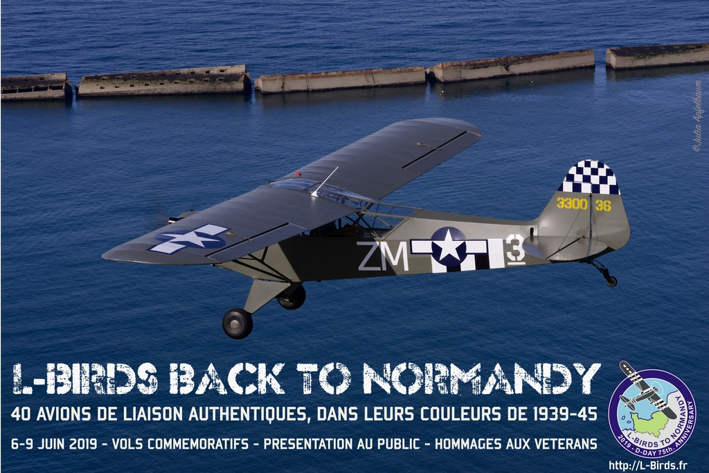 Rally Piper L-4 and L-Birds other 75th anniversary D-Day